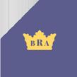 bra-top-logo